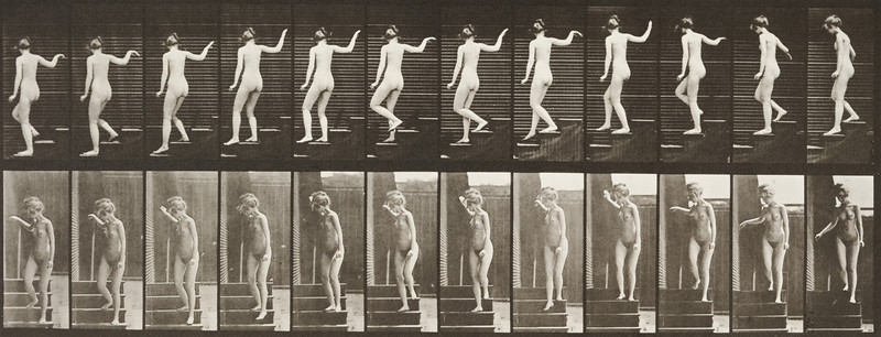 Nude woman descending stairs (Animal Locomotion, 1887, plate 132)