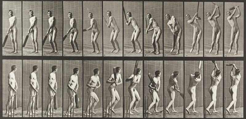 Nude man playing cricket, batting and drive (Animal Locomotion, 1887, plate 291)