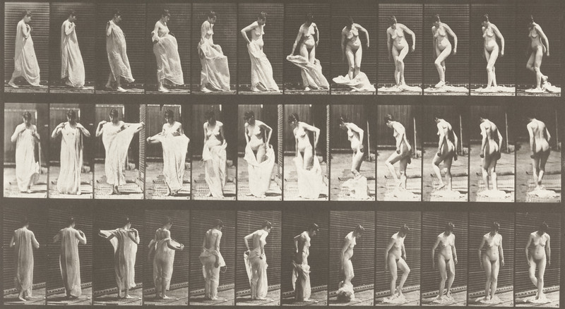 Nude woman taking off clothing (Animal Locomotion, 1887, plate 431)