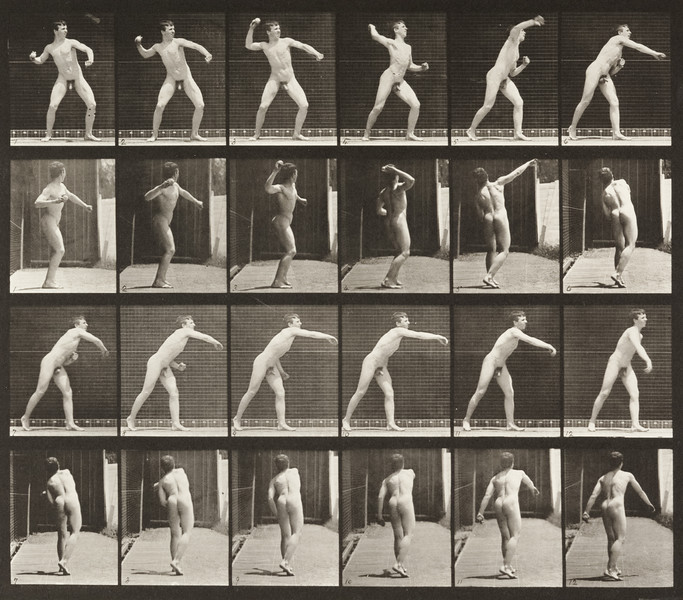 Nude man throwing baseball (Animal Locomotion, 1887, plate 286)