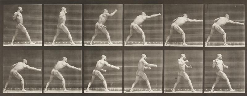 Nude man striking a blow with right hand (Animal Locomotion, 1887, plate 344)