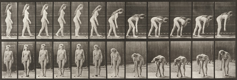 Nude woman stooping to pick up a ball (Animal Locomotion, 1887, plate 204)