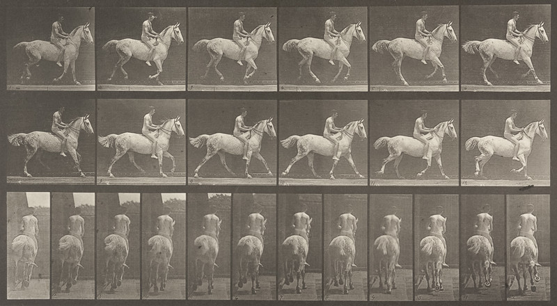 Horse Smith cantering, bareback with nude rider (Animal Locomotion, 1887, plate 623)