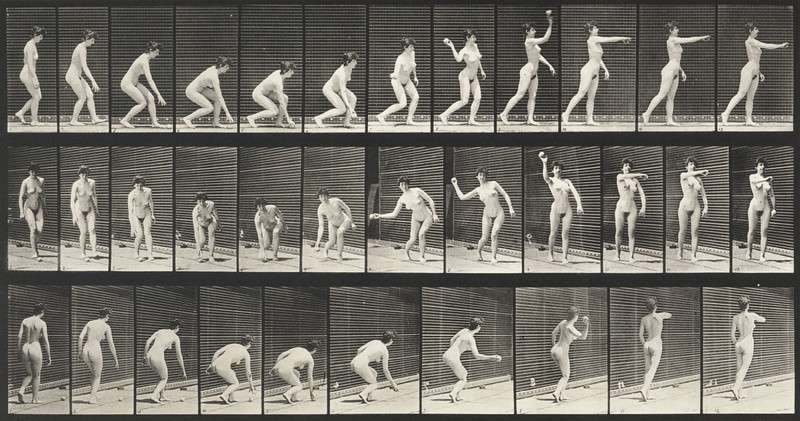 Nude woman picking up a ball and throwing it (Animal Locomotion, 1887, plate 303)