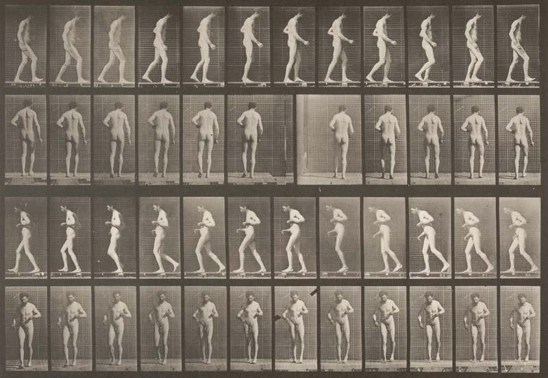 Nude man with lateral sclerosis walking (Animal Locomotion, 1887, plate 548)