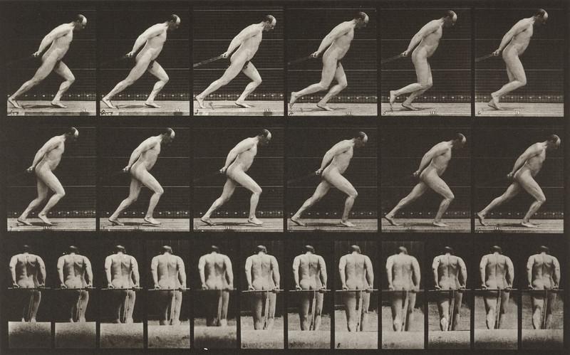 Nude man dragging a garden roller (Animal Locomotion, 1887, plate 392)