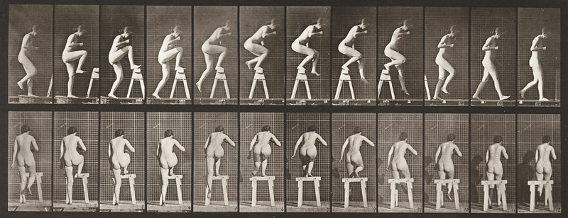 Nude woman stepping on and over a trestle (Animal Locomotion, 1887, plate 178)
