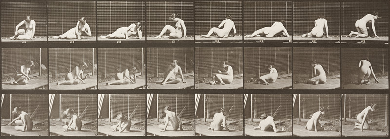 Nude woman turning and changing position while on the ground (Animal Locomotion, 1887, plate 266)
