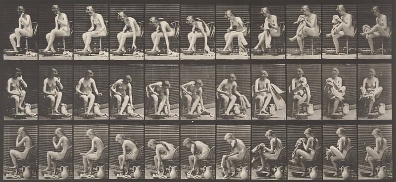 Nude woman sitting and wiping feet (Animal Locomotion, 1887, plate 411)