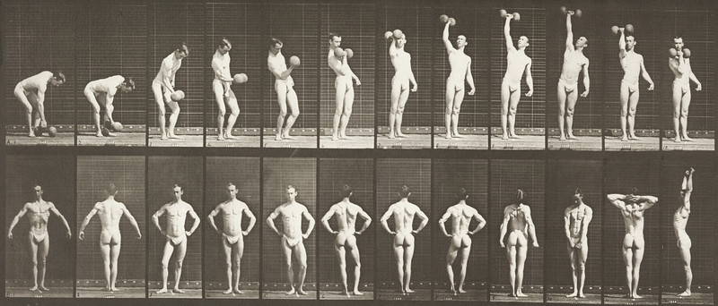 Man in pelvis cloth lifting weight (Animal Locomotion, 1887, plate 321)