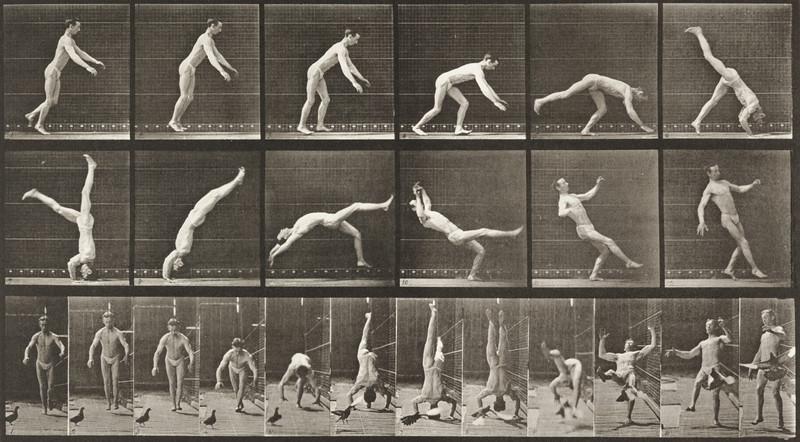 Man in pelvis cloth performing flip (Animal Locomotion, 1887, plate 365)