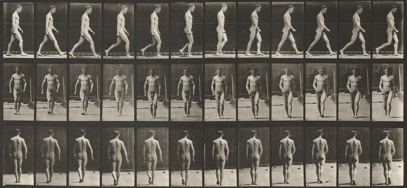 Nude man walking (Animal Locomotion, 1887, plate 1)