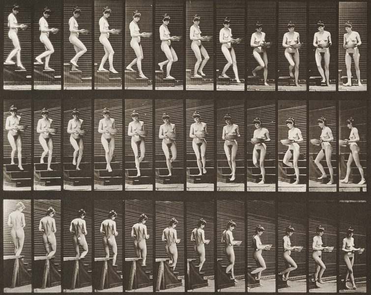 Nude woman descending stairs (Animal Locomotion, 1887, plate 144)