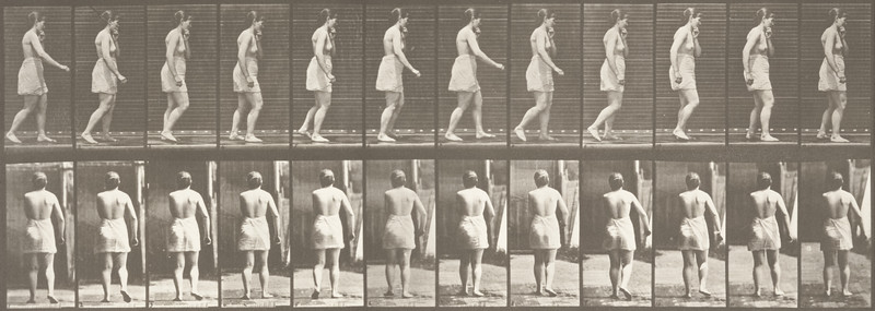 Semi-nude woman walking spastically (Animal Locomotion, 1887, plate 543)