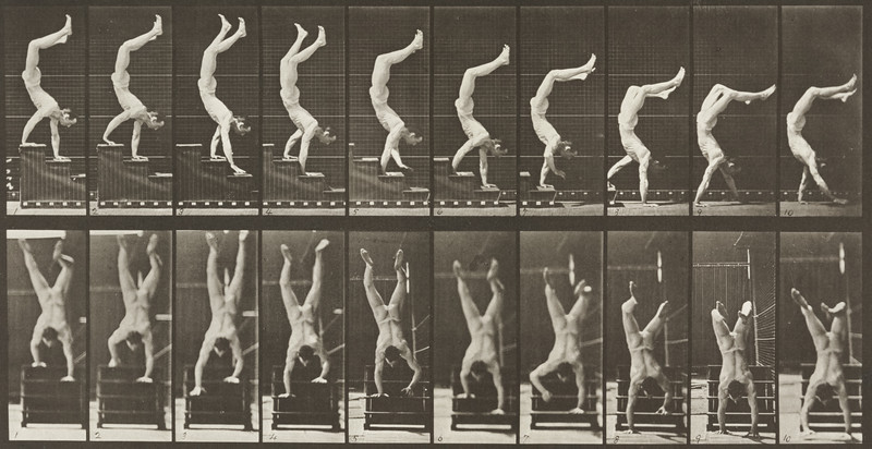 Male acrobat wearing pelvis cloth descending stairs on hands (Animal Locomotion, 1887, plate 368)