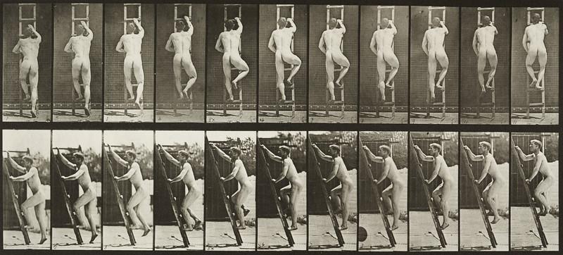 Nude man ascending a ladder (Animal Locomotion, 1887, plate 111)