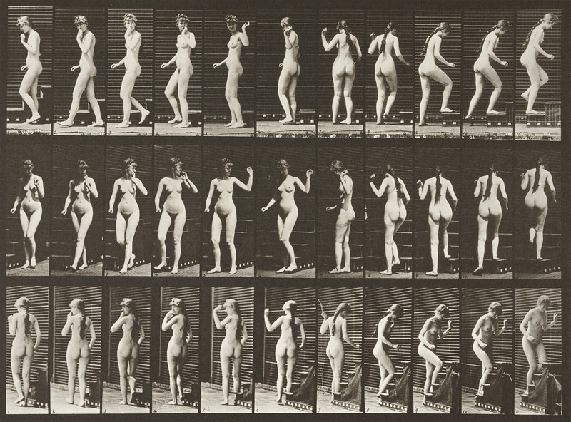 Nude woman turning, ascending stairs and waving hand (Animal Locomotion, 1887, plate 101)