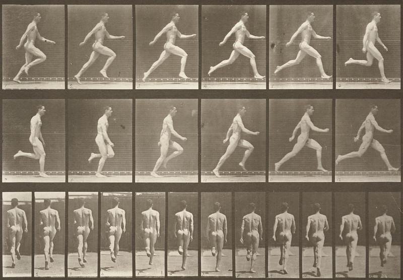 Nude man running at full speed (Animal Locomotion, 1887, plate 64)