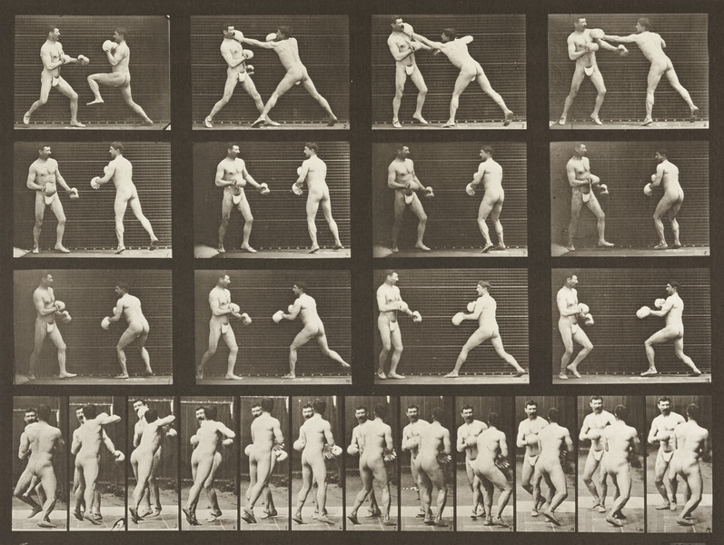 Two men in thong underwear boxing with gloves (Animal Locomotion, 1887, plate 335)