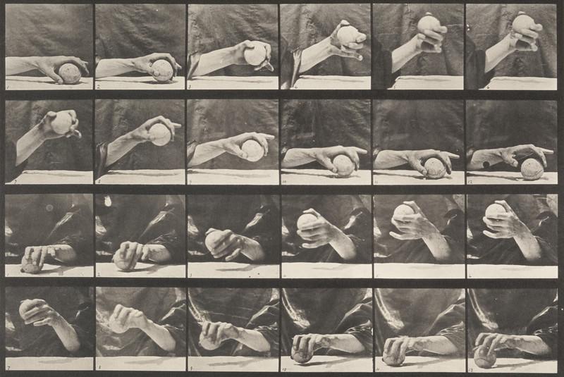 Hand lifting a ball (Animal Locomotion, 1887, plate 534)