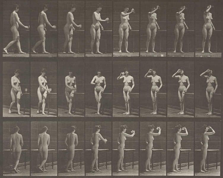 Nude woman drinking from a goblet while standing (Animal Locomotion, 1887, plate 443)
