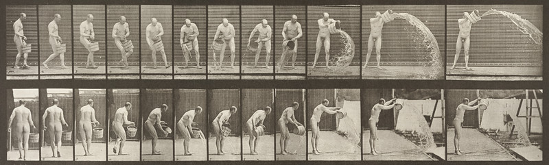 Nude man emptying a bucket of water (Animal Locomotion, 1887, plate 399)