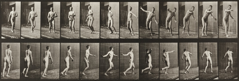 Nude man playing cricket, round-arm bowling (Animal Locomotion, 1887, plate 289)