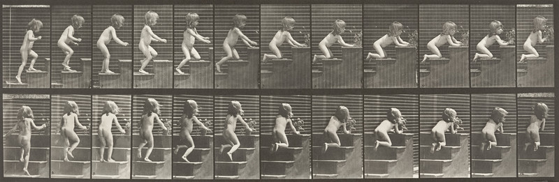 Nude child walking on stairs (Animal Locomotion, 1887, plate 474)