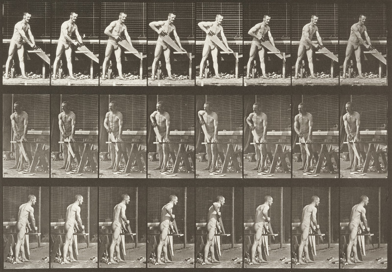 Man in pelvis cloth sawing a board (Animal Locomotion, 1887, plate 380)