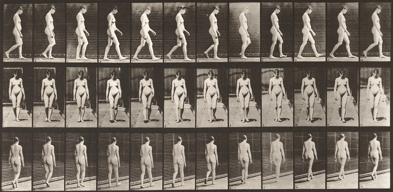 Nude woman walking (Animal Locomotion, 1887, plate 13)