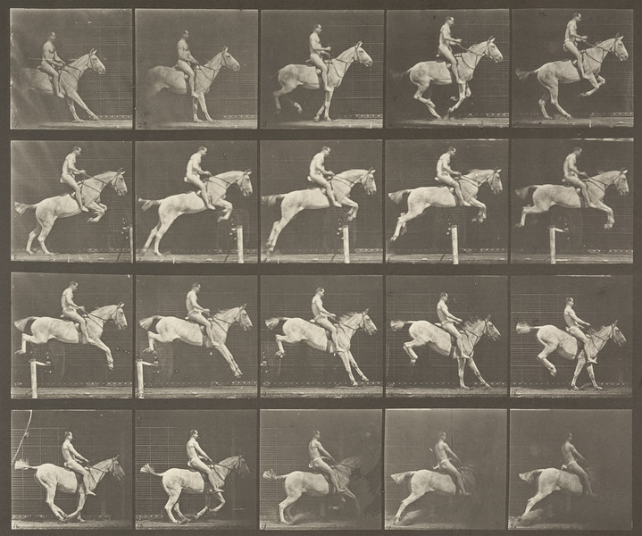 Horse Pandora jumping a hurdle, saddled with nude rider (Animal Locomotion, 1887, plate 642)