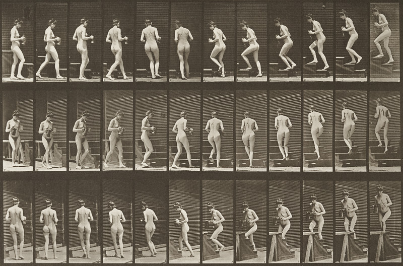 Nude woman turning and ascending stairs with a pitcher and goblet (Animal Locomotion, 1887, plate 103)