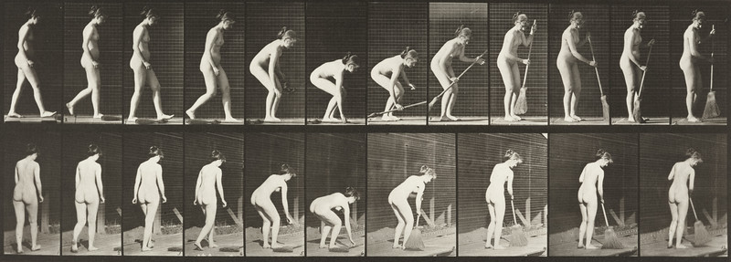Nude woman stooping, lifting a broom and sweeping (Animal Locomotion, 1887, plate 219)