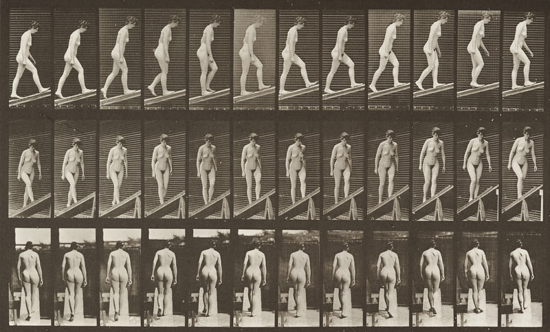 Nude woman ascending an incline (Animal Locomotion, 1887, plate 76)