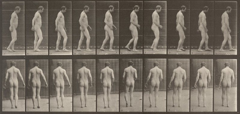 Nude man walking (Animal Locomotion, 1887, plate 553)