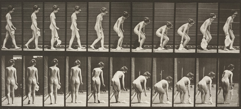 Nude woman dropping and lifting a handkerchief (Animal Locomotion, 1887, plate 202)