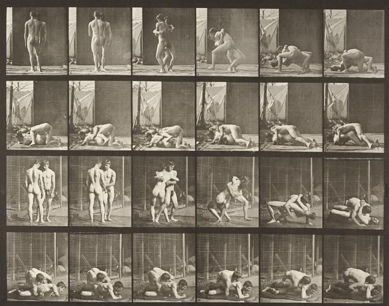 Nude men wrestling, lock (Animal Locomotion, 1887, plate 346)