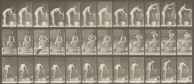 Nude woman washing clothes at a tub (Animal Locomotion, 1887, plate 432)