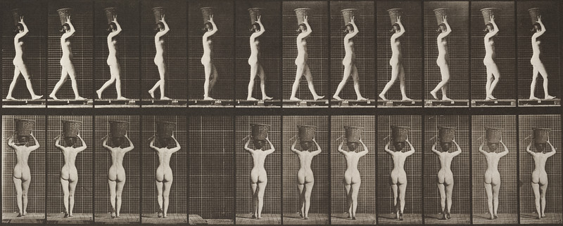 Nude woman walking and carrying basket on head (Animal Locomotion, 1887, plate 34)
