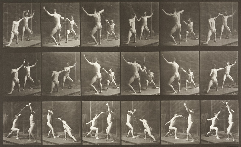 Two men in pelvis clothes fencing (Animal Locomotion, 1887, plate 350)