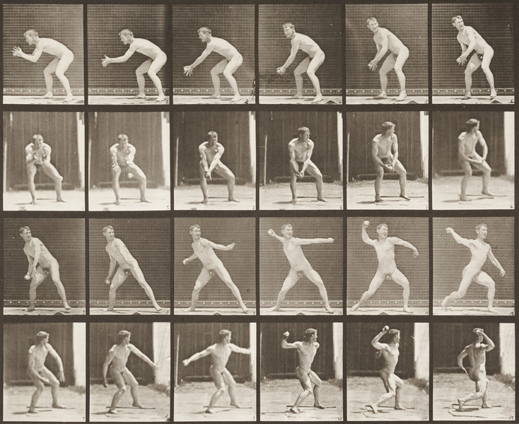 Nude man catching and throwing baseball (Animal Locomotion, 1887, plate 283)