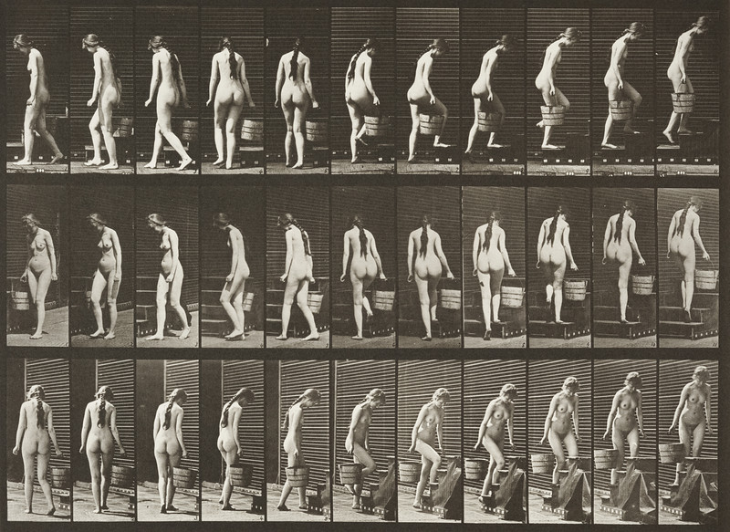 Nude woman turning and ascending stairs with a bucket of water (Animal Locomotion, 1887, plate 102)