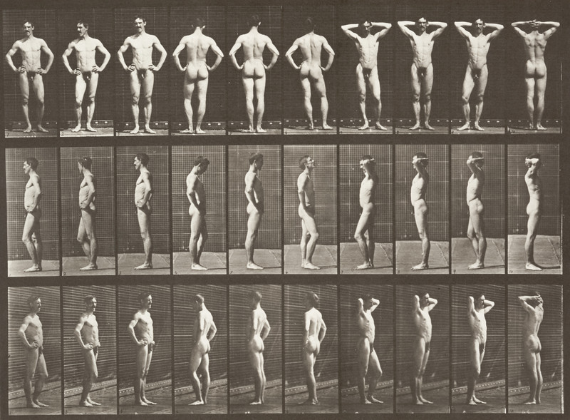 Nude man striking various poses (Animal Locomotion, 1887, plate 530)