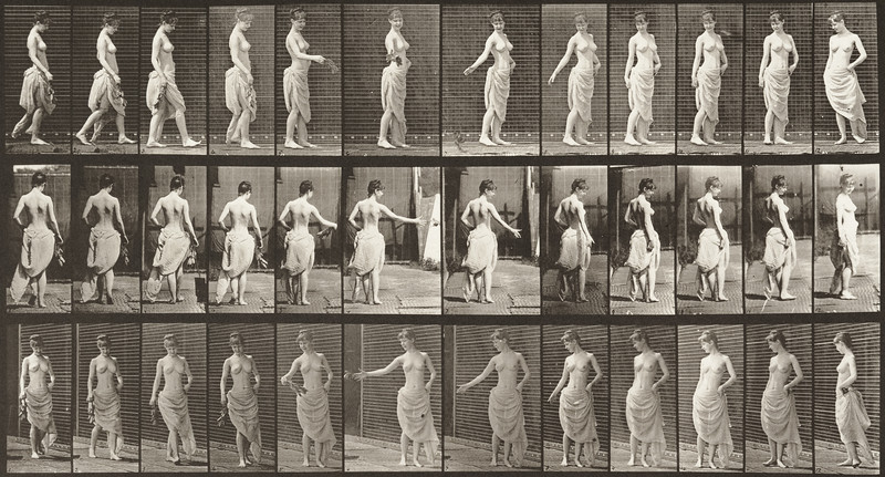 Semi-nude woman walking, scattering flowers and  turning around (Animal Locomotion, 1887, plate 53)