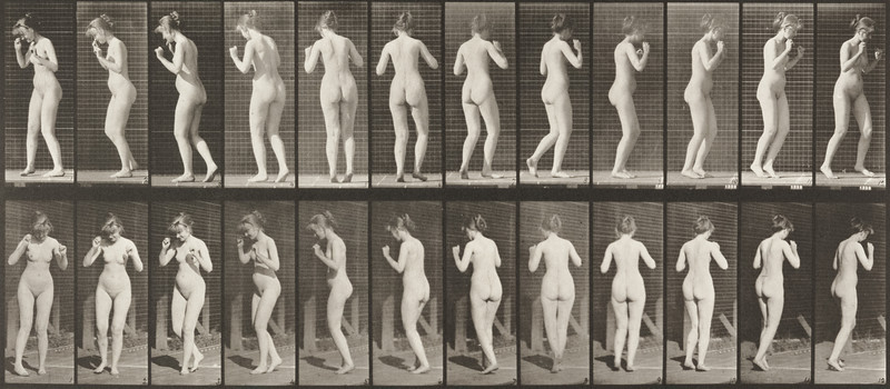 Nude woman dancing a waltz (Animal Locomotion, 1887, plate 195)