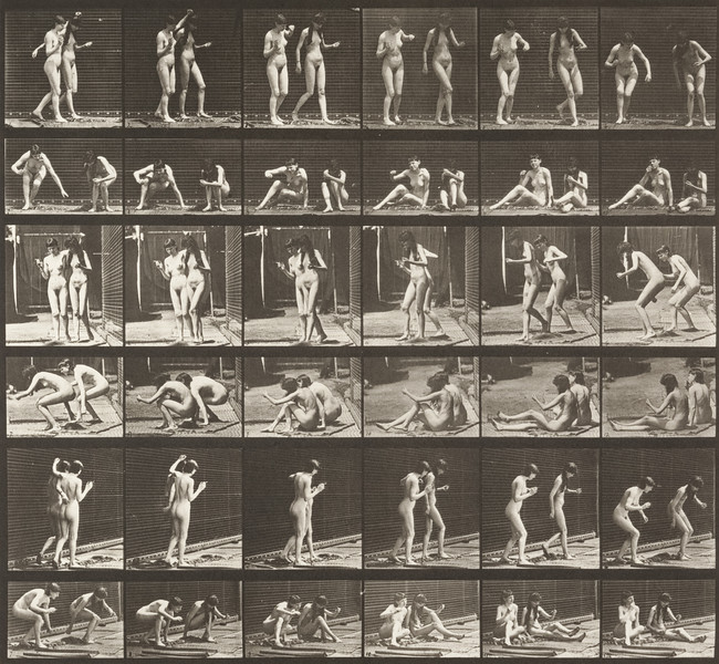 Two nude women turning around and sitting on the ground (Animal Locomotion, 1887, plate 245)