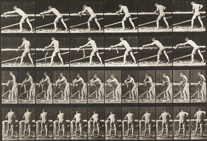 Man in pelvis cloth planning a board (Animal Locomotion, 1887, plate 379)