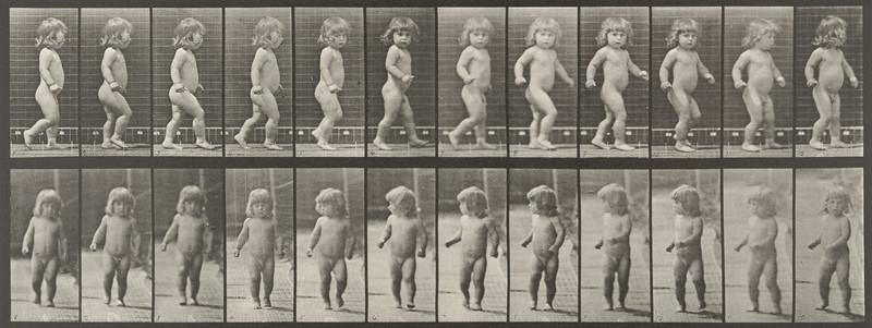 Nude child walking (Animal Locomotion, 1887, plate 468)