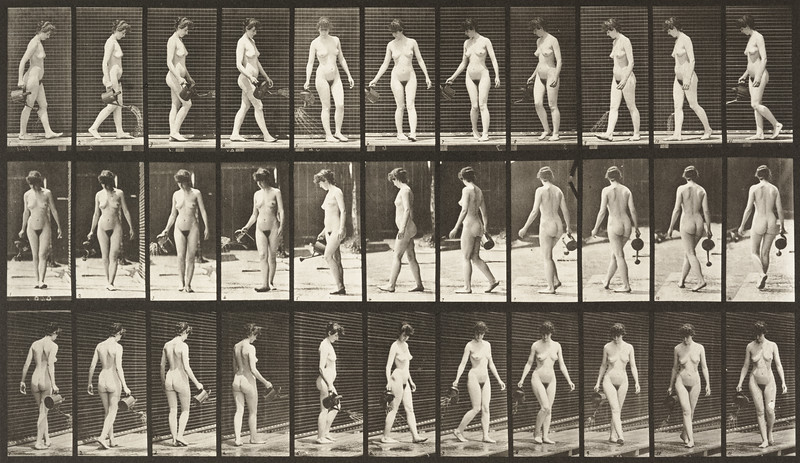Nude woman walking, turning around and using a sprinkling pot (Animal Locomotion, 1887, plate 51)