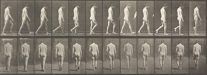 Nude man with locomotor ataxia walking (Animal Locomotion, 1887, plate 549)